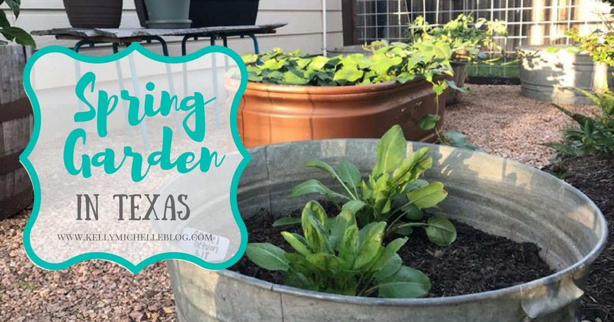 Spring Garden In Texas Kelly Michelle Blog