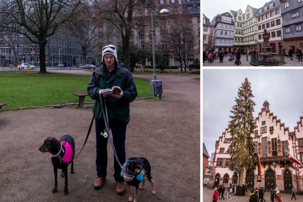 Collage of photos. Left: man reading book while holding two dog leashes. Top right: German buildings. Bottom right: Tree decorated in front of German building.