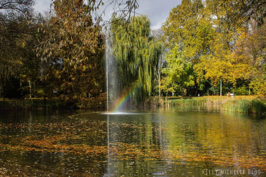 A pond with a waterfall in the middle. A rainbow is cast in the spray of the waterfall. Trees in the background.